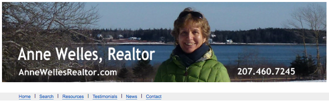 Anne Welles Realtor Banner